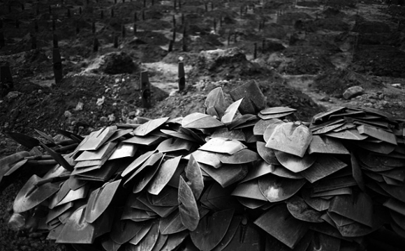 Srebrenica, Boryana Katsarova