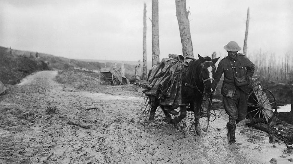 Bitka za Somu, novembar 2016. Vojnik vodi natovarenog konja.