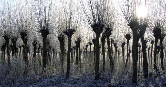 Land Art in Barendrecht, Nederland http://bit.ly/1lJJ34e