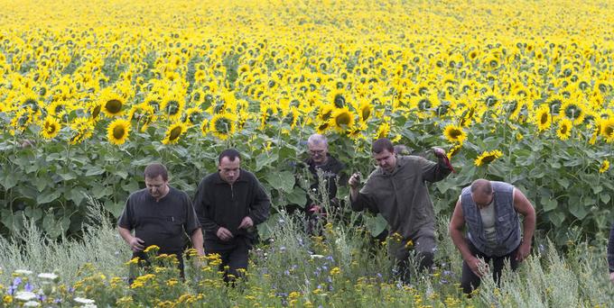 MH17 crash, Ukraine, foto: AP