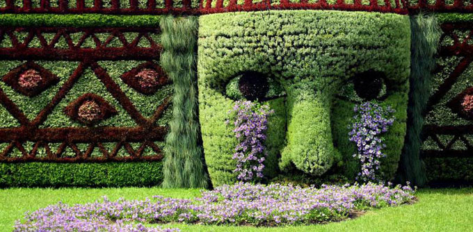 Crying garden http://bit.ly/XGpLsd