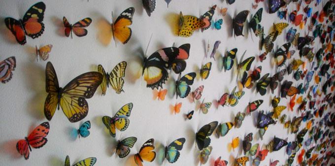 Kristi Malakoff, Swarm http://bit.ly/1osO0Q8
