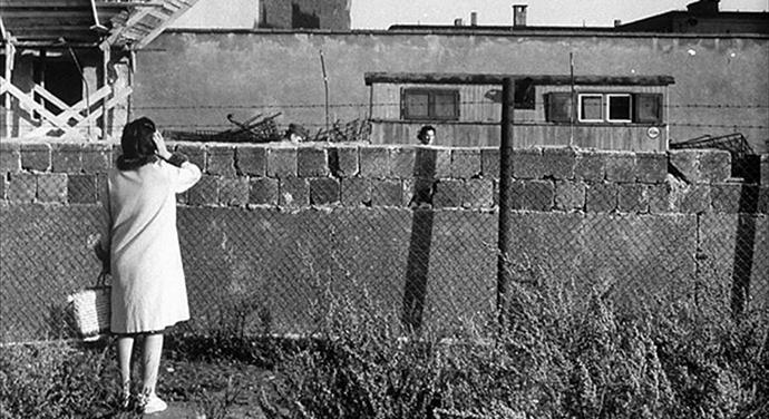 Anti-zid