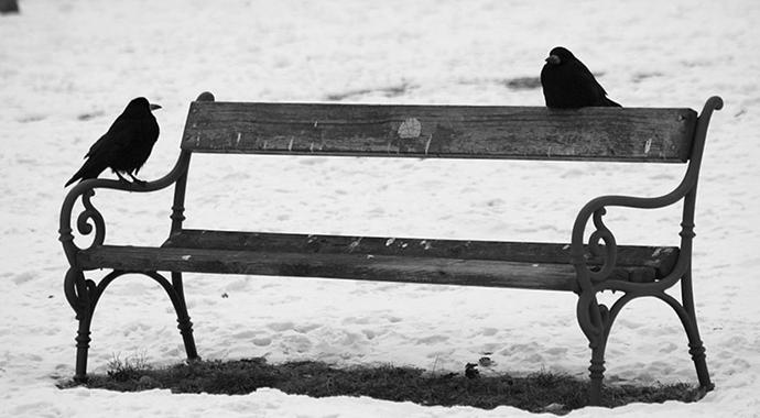 Flickr, foto: kashia