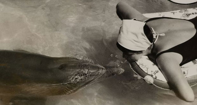 Margaret Howe Lovatt, The girl who talked to dolphins, BBC
