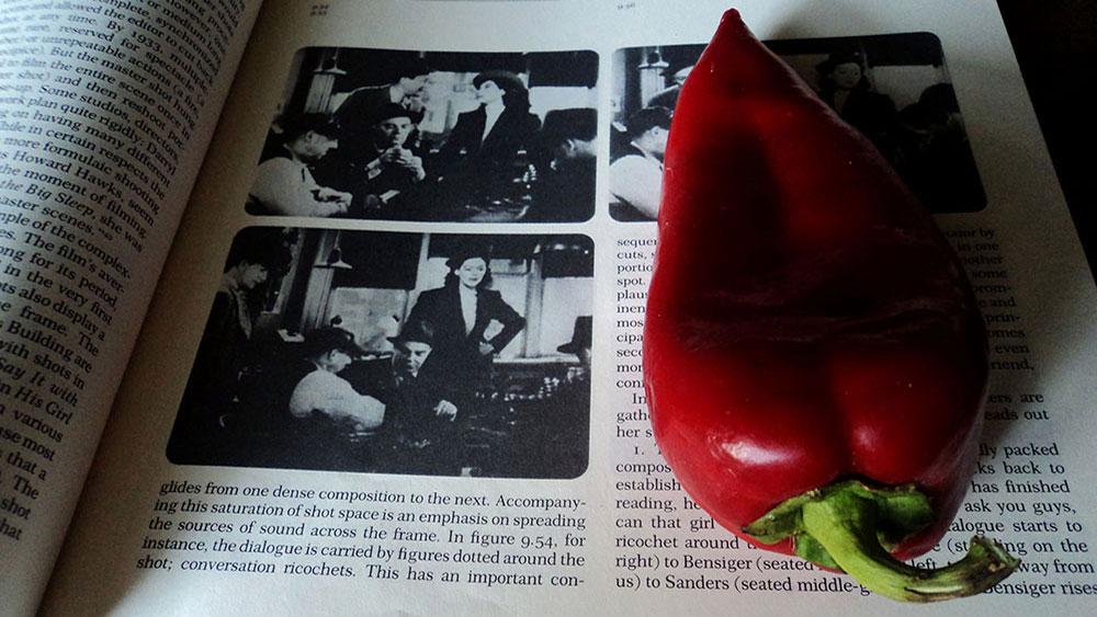 Fotografije čitateljki, Slavica Miletić, Bookmark
