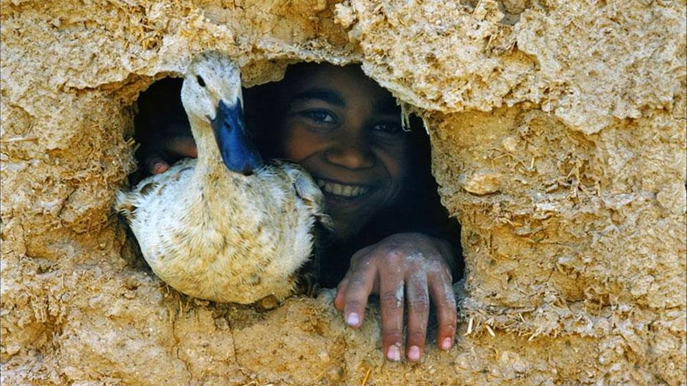 Rupa sreće, foto: Seyed Ali Seyedi