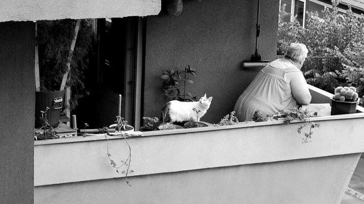 Fotografije čitateljki, Mina Milenković
