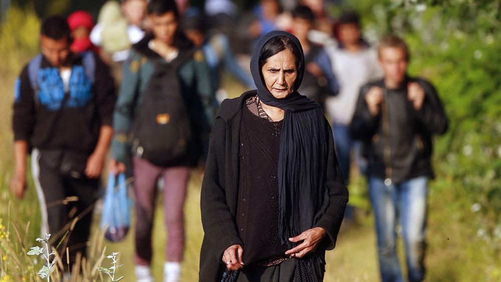 Izbeglica iz Avganistana, granica između Srbije i Mađarske, foto: Laszlo Balogh, Reuters