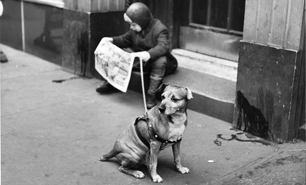 Dečak i pas, Nju Jork, foto: Nina Leen