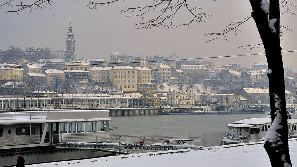 Fotografije čitateljki, Alisa Koljenšić Radić