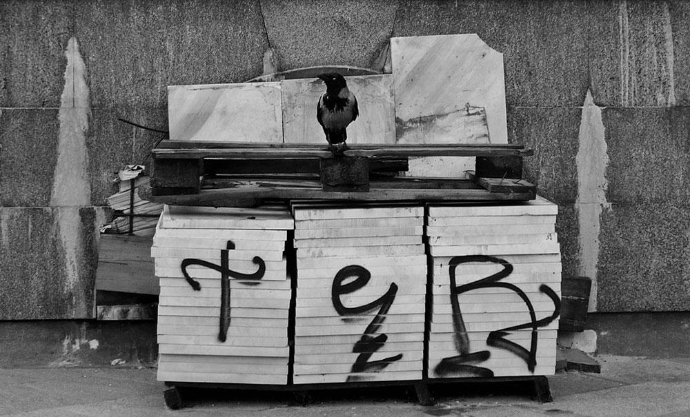 Hram svetog Save, fotografije čitalaca, Predrag Trokicić