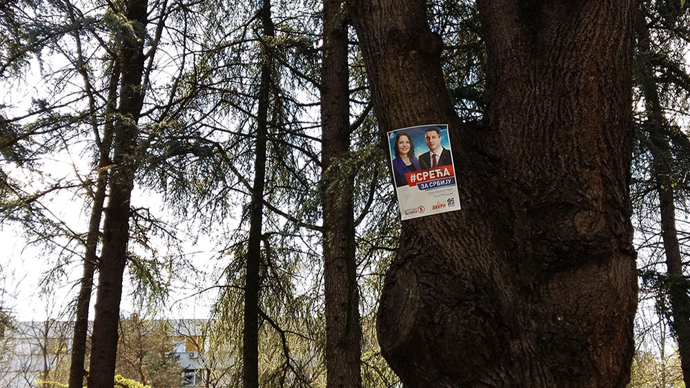 izborni plakat DSS-a i Dveri na drvetu sa sloganom Sreća za Srbiju