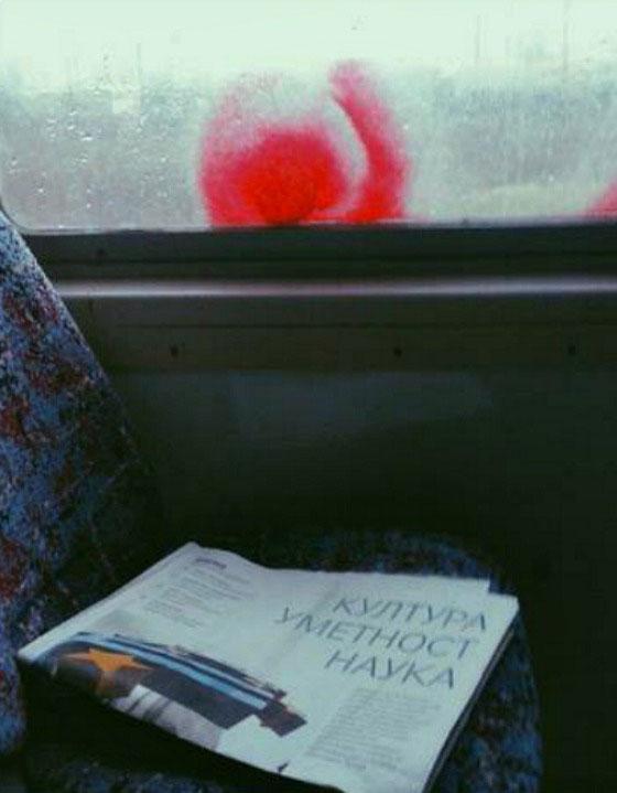 Left behind, fotografije čitateljki, Džejlana Prušević