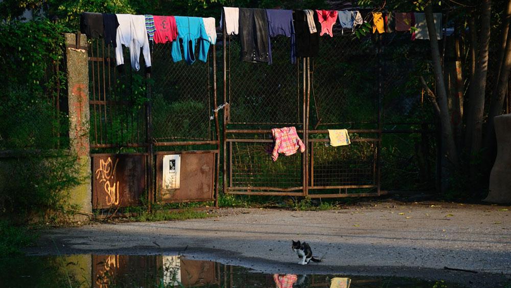 Topovske šupe, foto: Ivana Karić