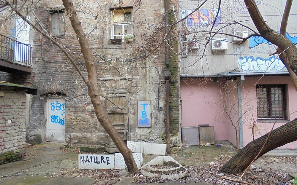 Nature, foto: Slavica Miletić
