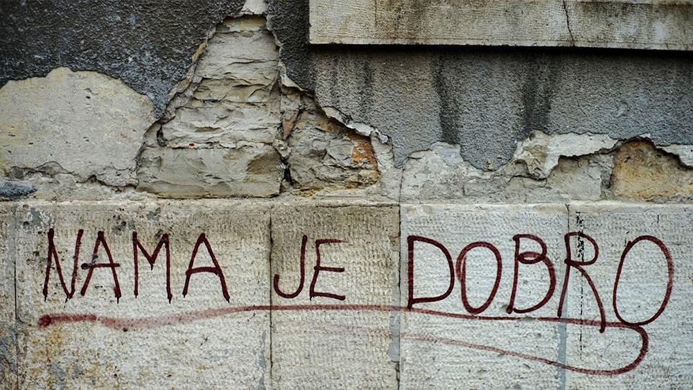 Fotografije čitateljki, Neda Radulović-Viswanatha