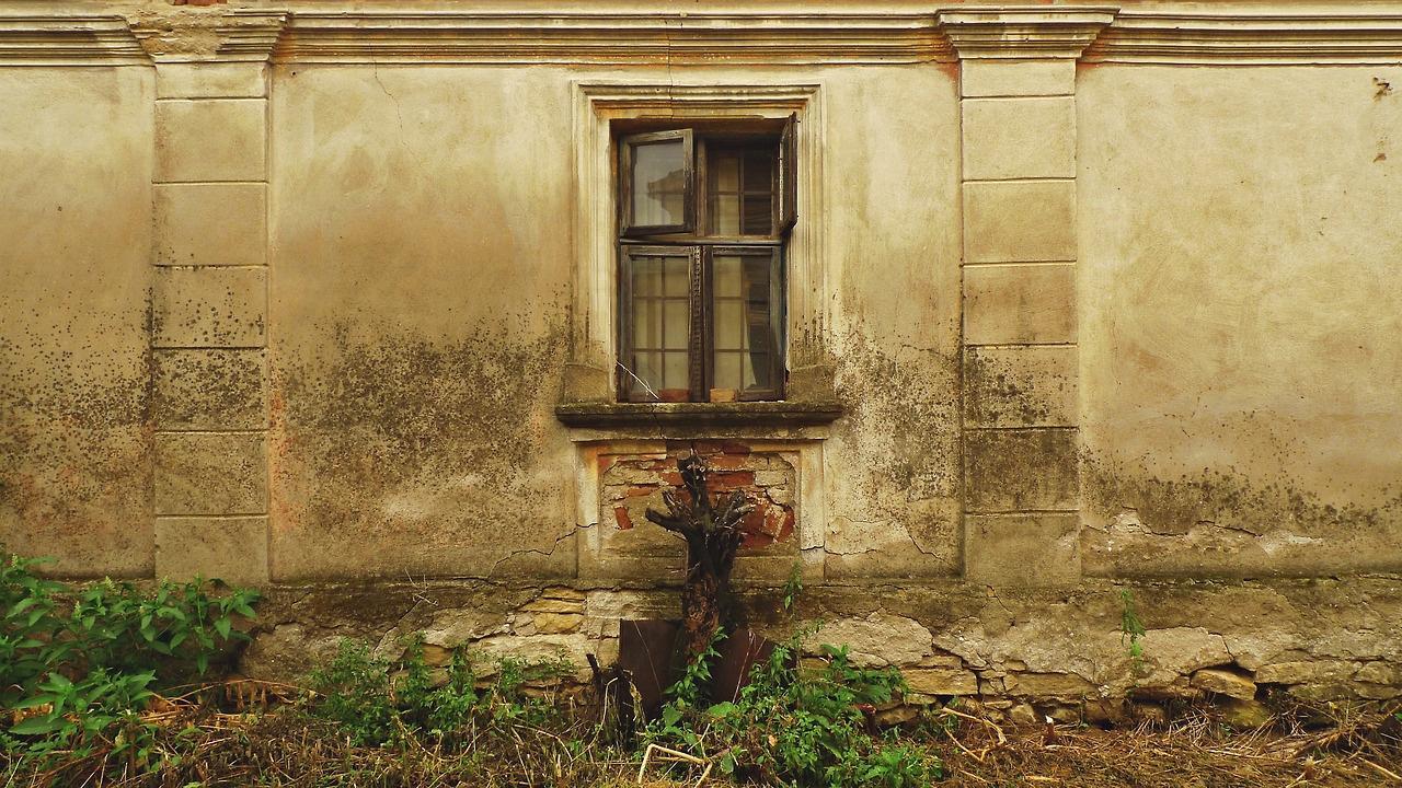 zid napuštene kuće