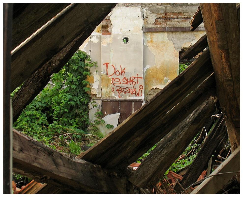 natpis Dok nas smrt ne rastavi, na nekakvom napuštenom i zaraslom mestu