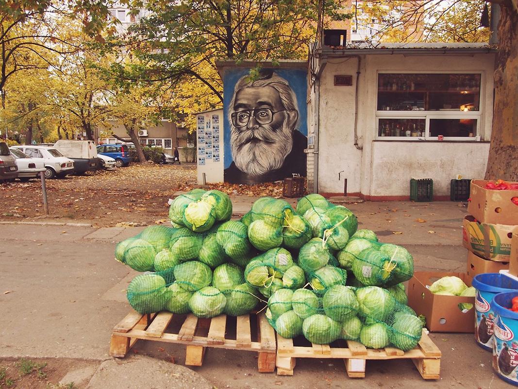"""Crazy House"", the hiding place of Radovan Karadzic, November 2017, photo: Predrag Trokicic"