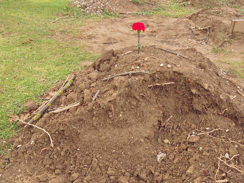 humka na koju je poboden crveni karanfil