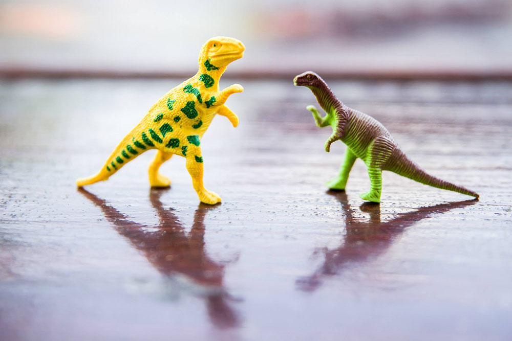 Dino park Vedrana Bukarice