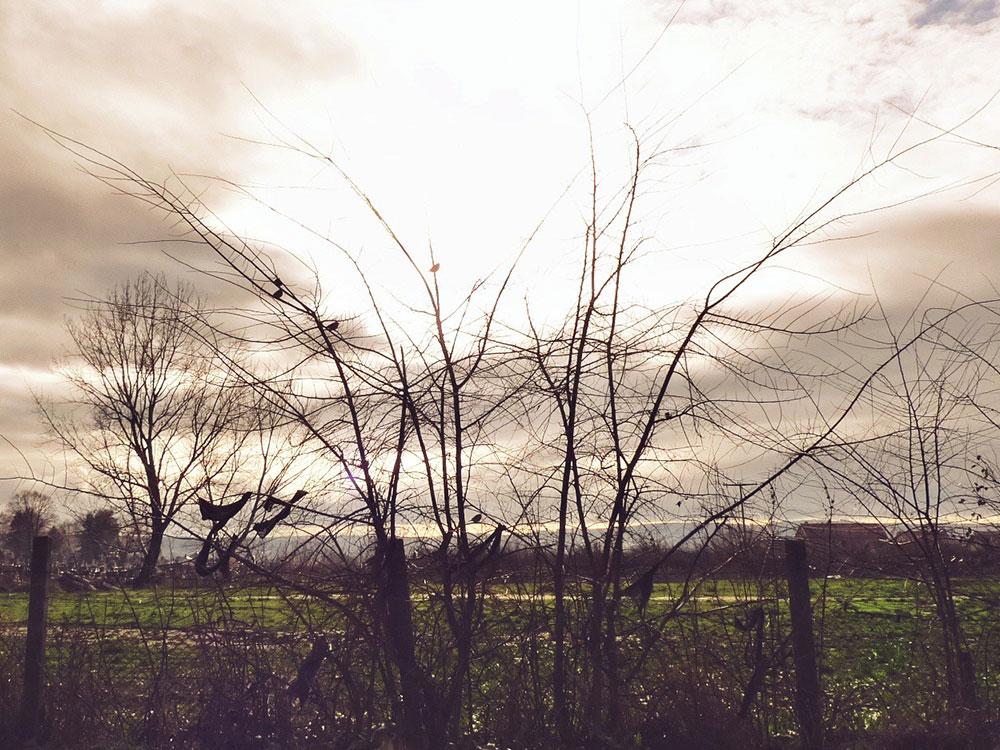 olujno nebo