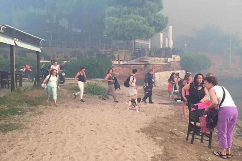 Požari kod Atine, foto: FE