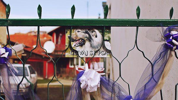 Kapija ukrašena za svadbu, foto: Predrag Trokicić