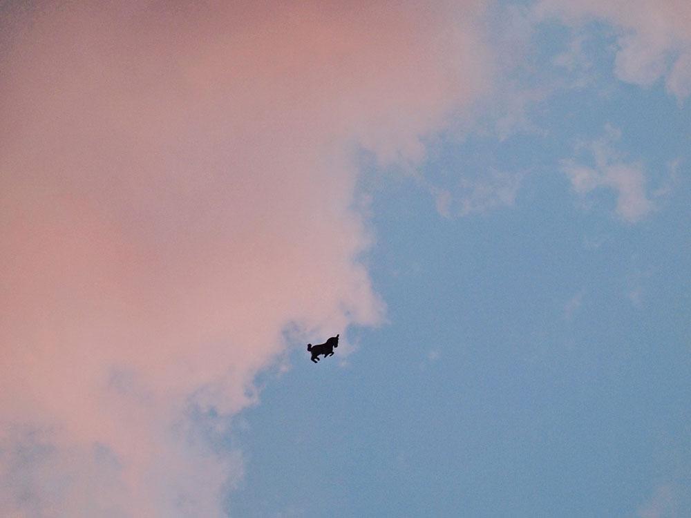 balon jednorog na nebu