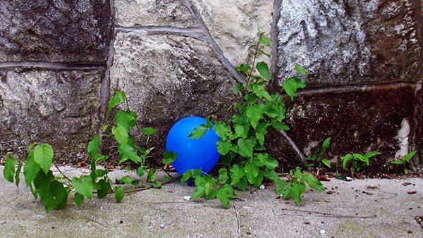 Plavi balon, foto: Predrag Trokicić