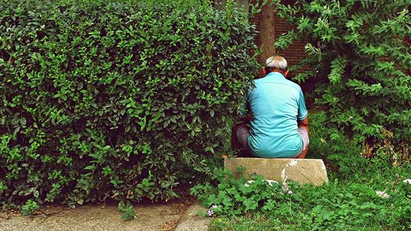 čovek viđen s leđa, sedi pored žbunja