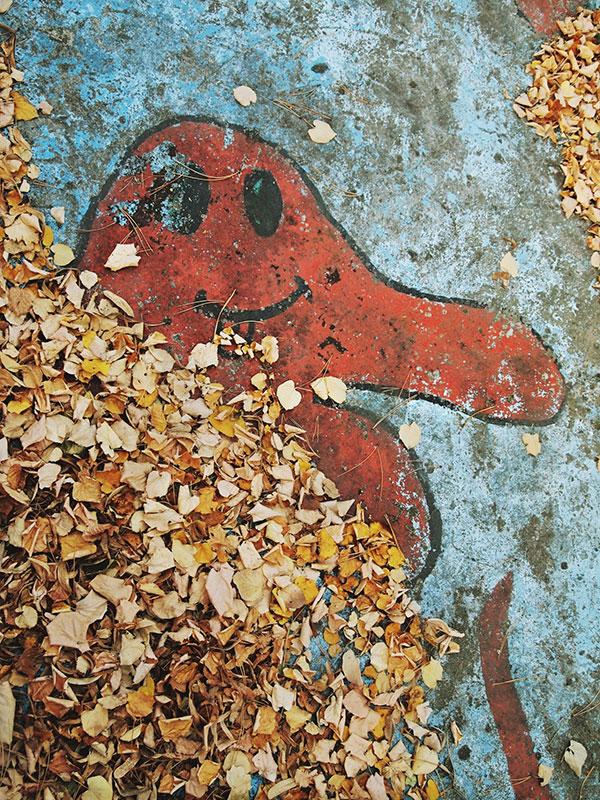 prazan bazen prekriven lišćem