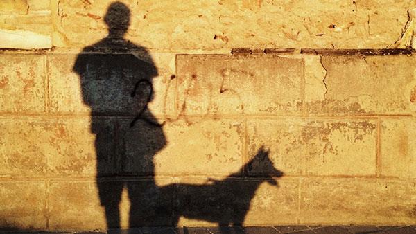 senke na zidu - čovek i pas