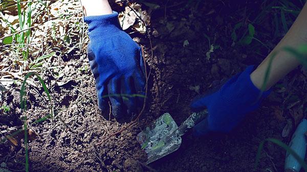 kopanje bašte