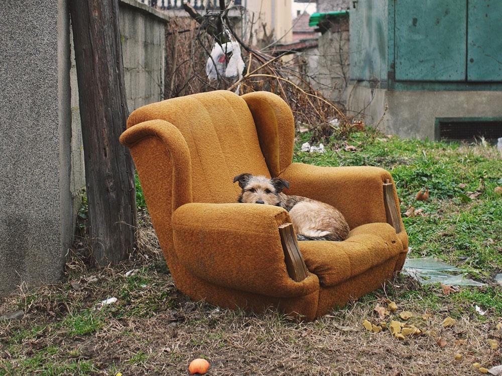 ker u fotelji