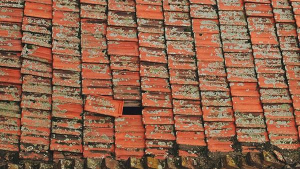 crep na krovu