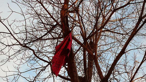 crvena marama