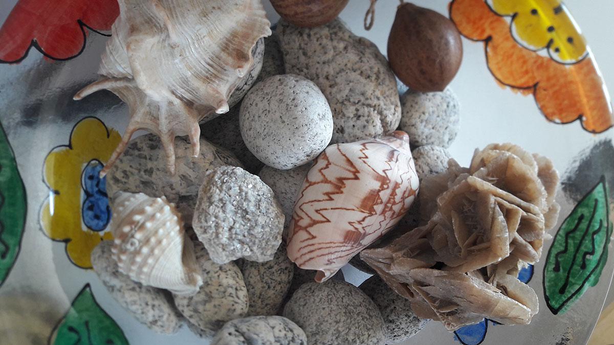 kamenje i školjke