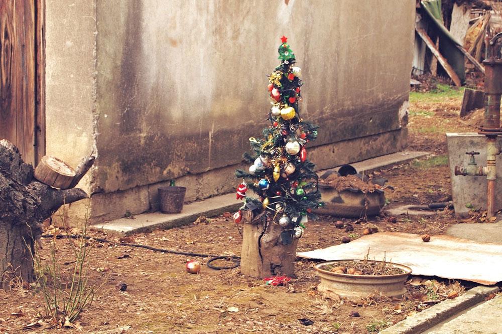 novogodišnja jelka u dvorištu kuće
