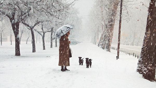 žena na snegu
