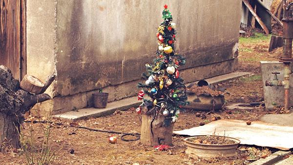 novogodišnja jelka