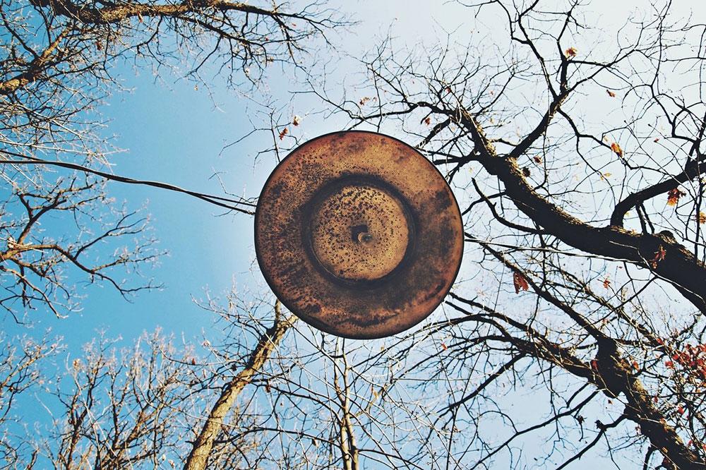 lampa u krošnjama drveća