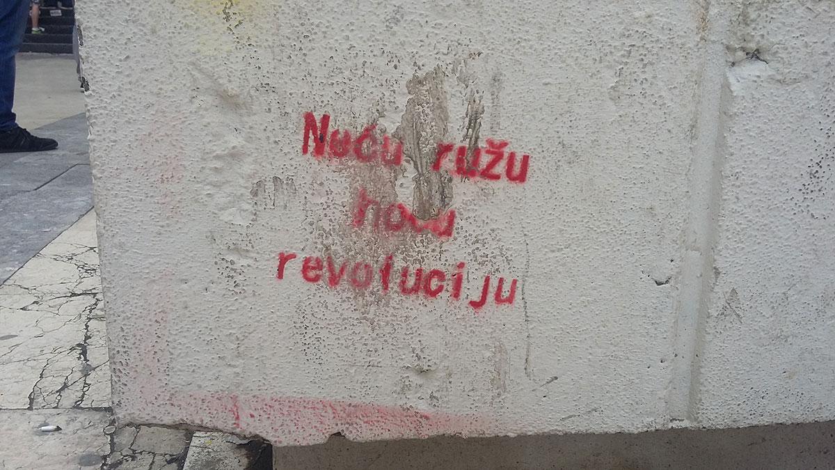 Grafit Neću ružu, hoću revoluciju