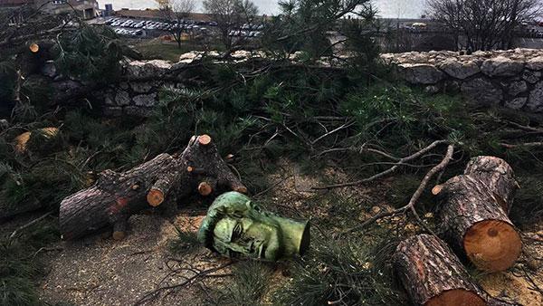 Ilustracija: posečeno drvo na Kalemegdanu zajedno sa glavom Pobednika