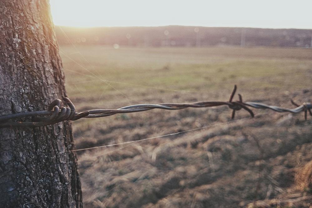 ograda od bodljikave žice