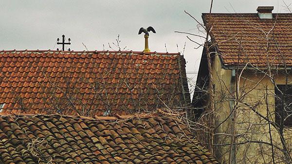Krovovi kuća zarasli u trnje