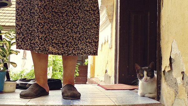 žena i mačka na ulazu u kuću