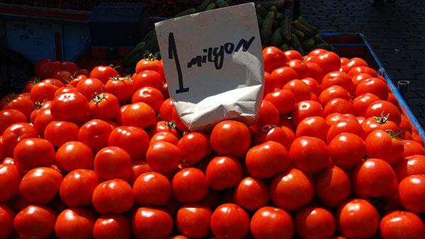 paradajiz