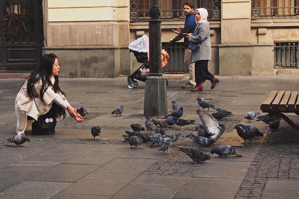 Knez Mihajlova ulica u Begradu: Predrag Trokicić
